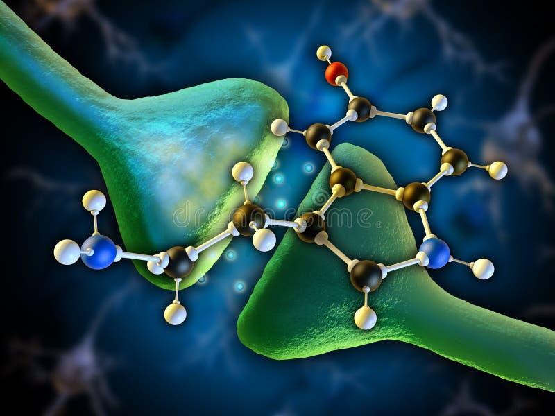 Serotonina ilustración del vector