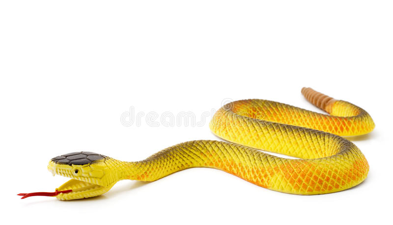 Serpent image stock