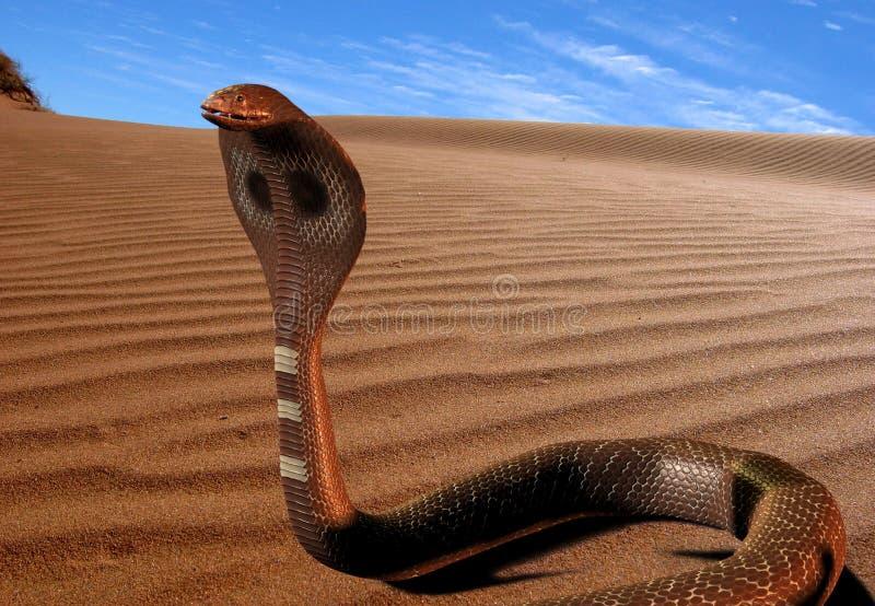 serpent 3d illustration libre de droits