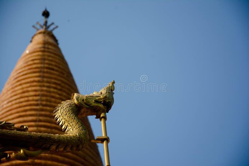 serpent royalty-vrije stock fotografie