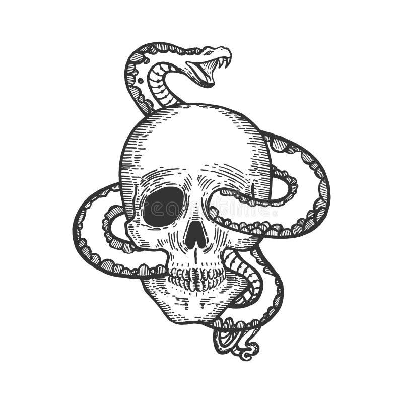 Serpent dans l'illustration humaine de vecteur de croquis de crâne illustration stock