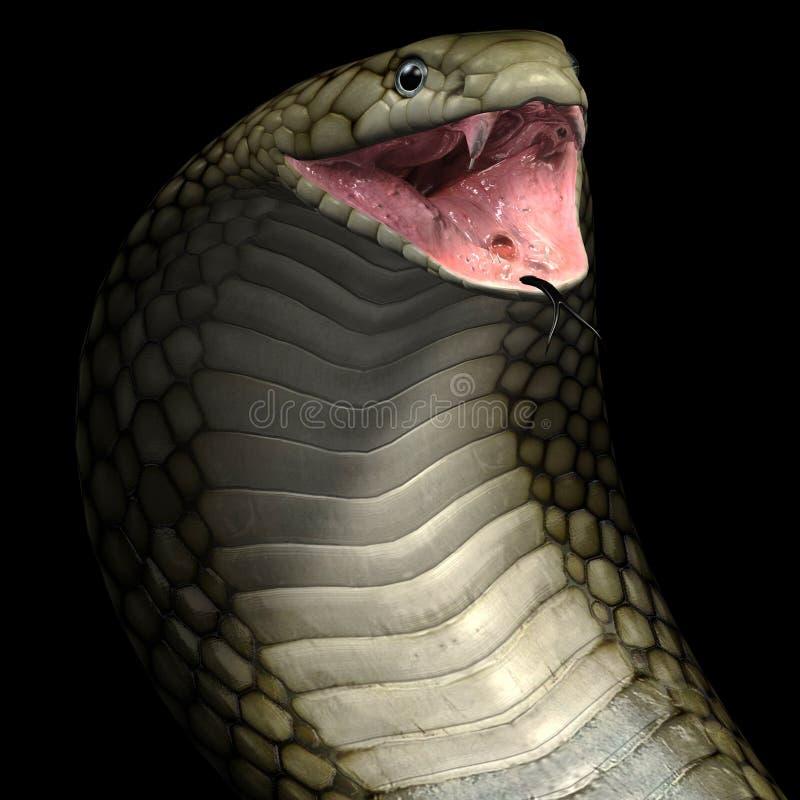 Serpent de cobra de vipère illustration libre de droits