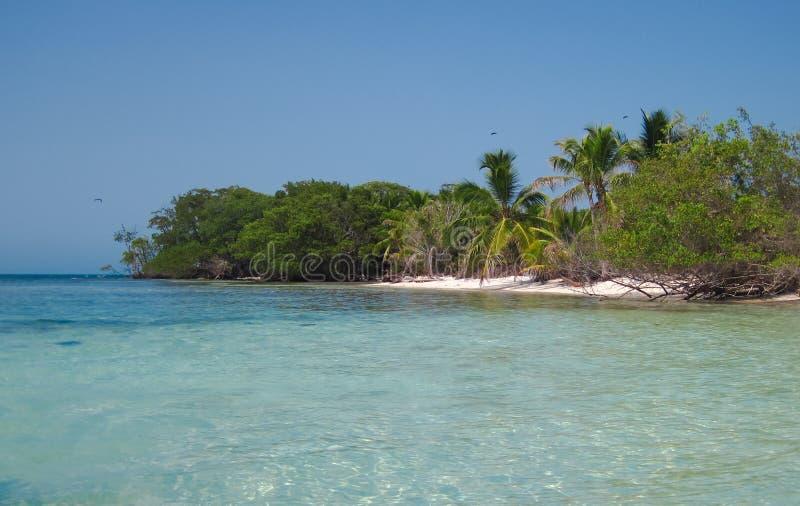 Serpent occidental Caye photos libres de droits