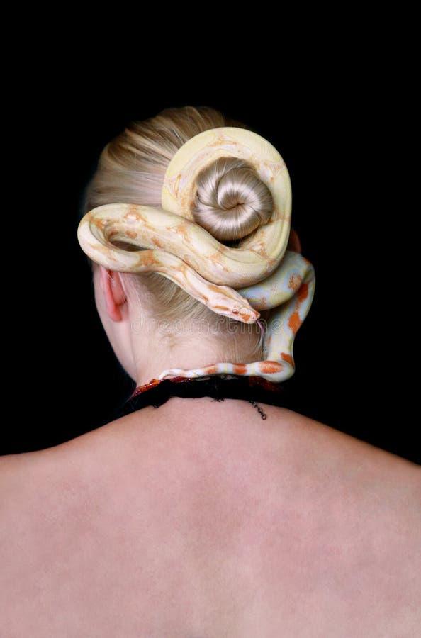 Serpent sur la tête de femme Boa constrictor albino, espèce non venimeuse de serpent, rampe les cheveux et enroule les cheveux de images stock