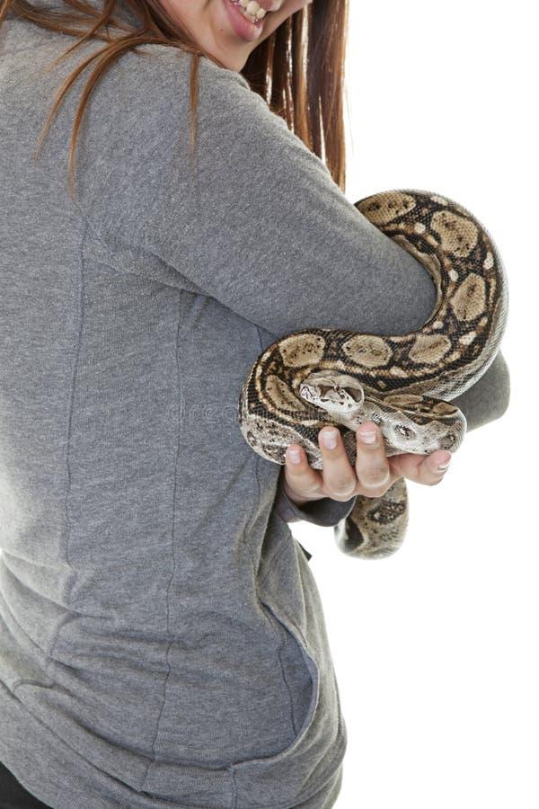 Serpente da boa do animal de estimação foto de stock royalty free