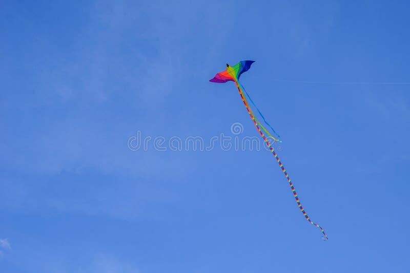 Serpente de voo com uma cauda longa na cor da bandeira de minorias sexuais o voo do gay e lesbiana serpenteia sob a forma de um b fotografia de stock