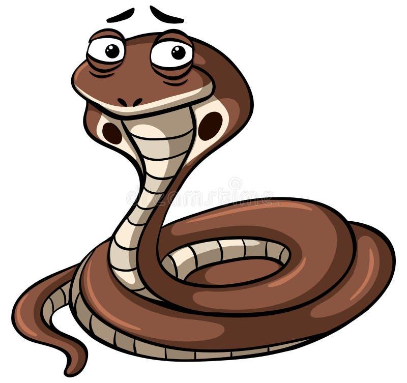 Serpente della cobra reale su fondo bianco illustrazione vettoriale