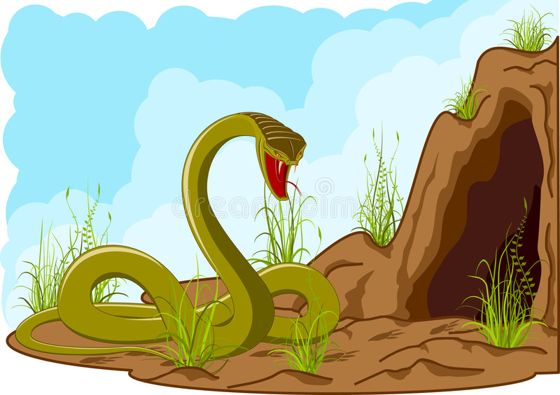 Serpente irritada perto da caverna ilustração do vetor