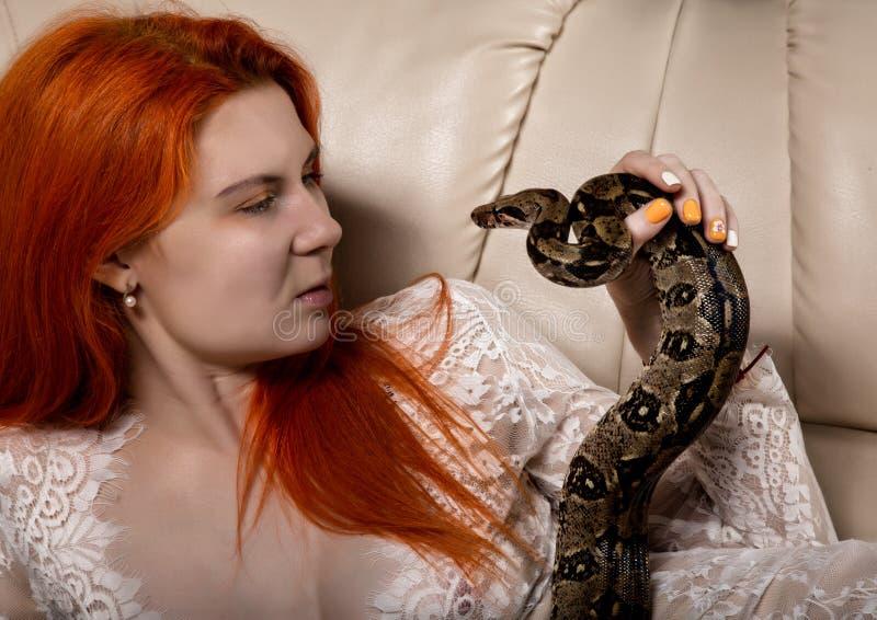 Serpente 'sexy' da terra arrendada da mulher do ruivo menina da foto do close-up com pitão do pigmeu em um fundo branco fotos de stock royalty free