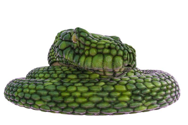 Serpente verde gigante em um fundo branco ilustração stock