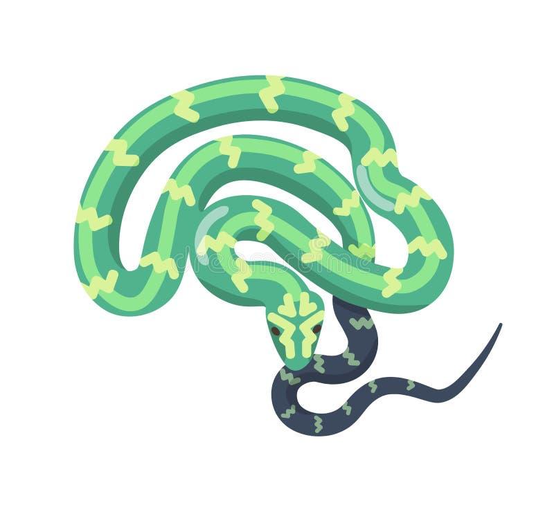 Serpente verde isolada no fundo branco Réptil legless tropical, predador peçonhento, animal carnívoro selvagem Boa ou ilustração royalty free