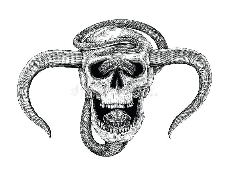 Serpentez avec l'illustrati humain de gravure de vintage de dessin de main de crâne illustration de vecteur