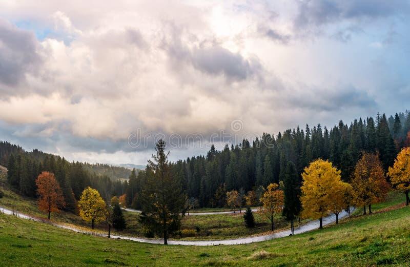 Serpentina attraverso la foresta in autunno fotografia stock libera da diritti