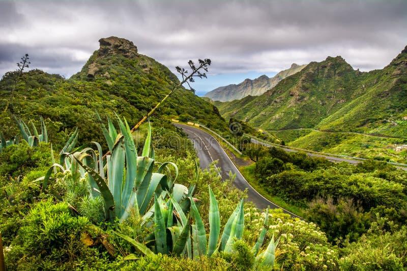 Serpentina de la montaña El camino es montañoso La manera de Anaga imagen de archivo