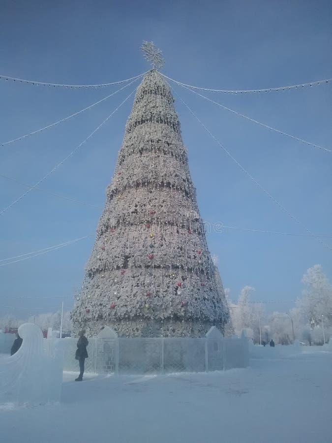 Serpentine de guirlande d'arbre de Noël de jouet de Noël de vacances de Frost images libres de droits