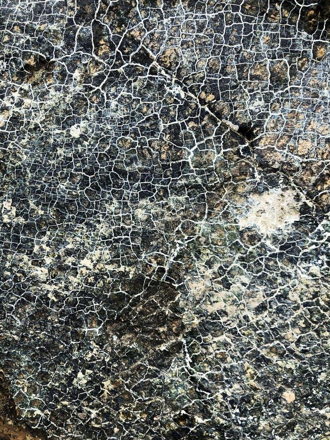 serpentine peridotite royalty free stock photo