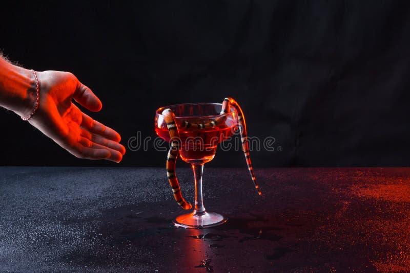 Serpiente en un vidrio con el líquido rojo y una mano brutal masculina contra un fondo oscuro fotografía de archivo