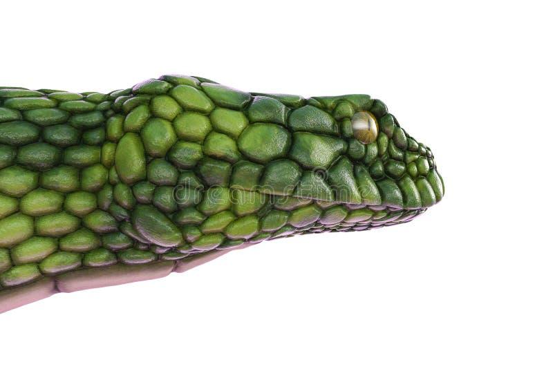 Serpiente verde gigante en un fondo blanco ilustración del vector