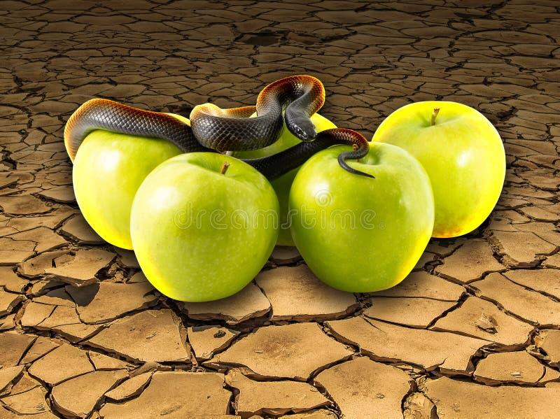 Serpiente y manzanas negras en la tierra agrietada fotografía de archivo libre de regalías
