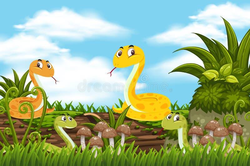 Serpientes en escena de la selva libre illustration