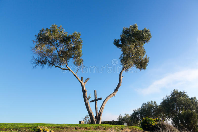Serra Cross in Ventura California between trees royalty free stock photos