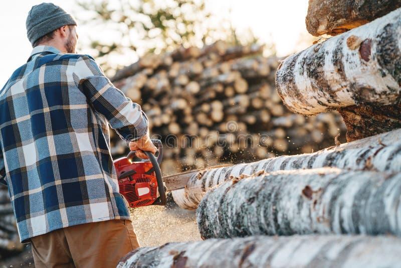 Serra de cadeia vestindo do uso da camisa de manta do lumberman forte profissional na serração imagens de stock royalty free