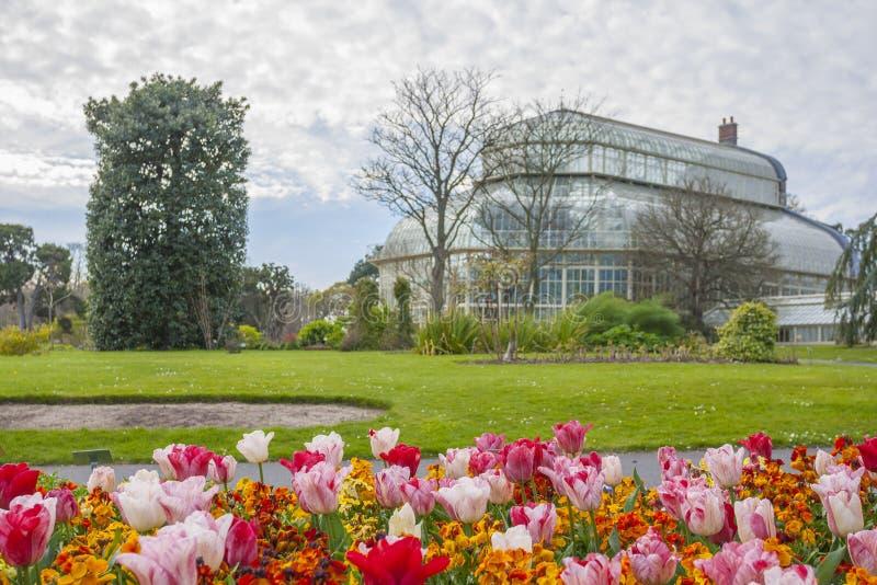 Serra nei giardini botanici nazionali immagini stock libere da diritti