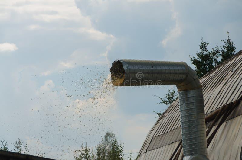 A serragem que voa para fora o tubo do respiradouro no recipiente para o coll fotografia de stock royalty free