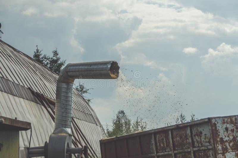 A serragem que voa para fora o tubo do respiradouro no recipiente para o coll fotografia de stock