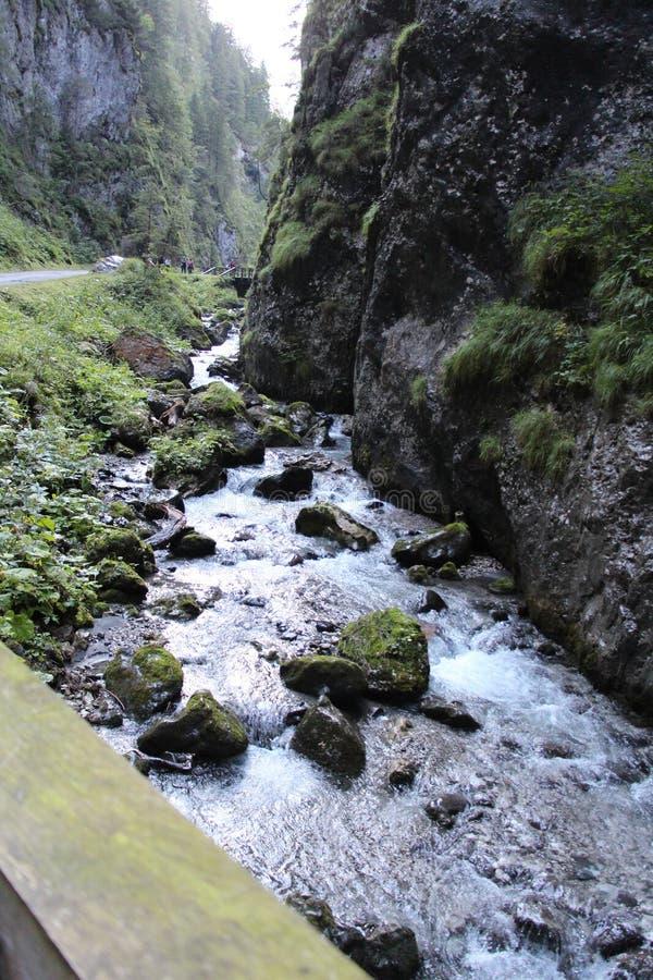 Serrai di sottoguda Canyon, Veneto, Italy. royalty free stock images