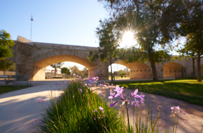 Serrano bridge in Valencia in Turia park Spain. Serrano bridge in Valencia in Turia park at Spain spring flowers foreground stock photos