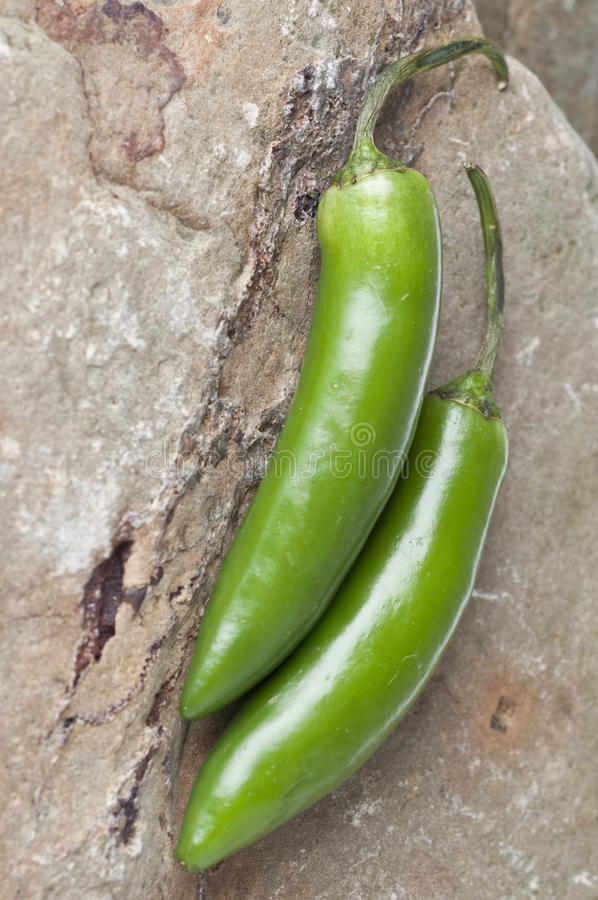 Serrano Pepper. Detail with Selective Focus on Rock Background stock image