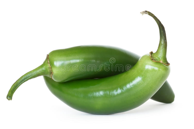 Serrano peppers. Two serrano peppers isolated on white background royalty free stock images