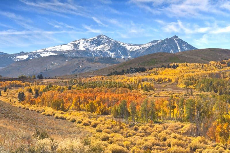 Serras orientais Autumn Color de Califórnia, montanhas, céu fotografia de stock royalty free