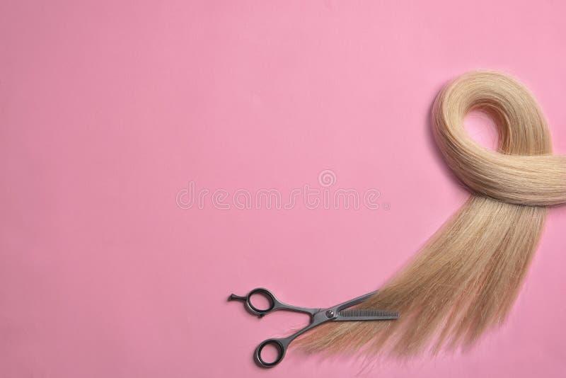 Serratura di capelli biondi e delle forbici sul fondo di colore fotografia stock libera da diritti