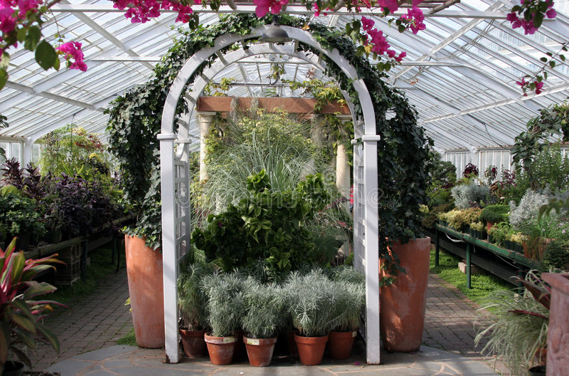 Download Serre chaude photo stock. Image du horticulture, jardin - 727922