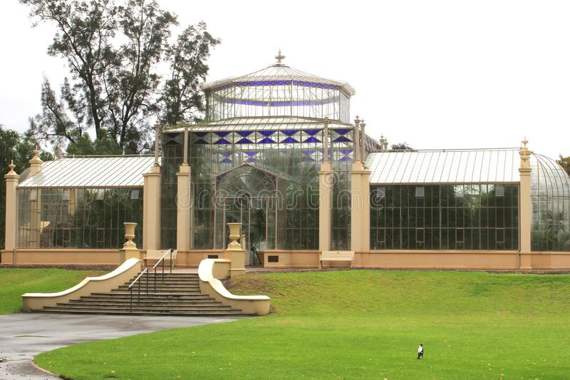 Serre chaude dans les jardins botaniques d'Adelaïde, Australie photos libres de droits