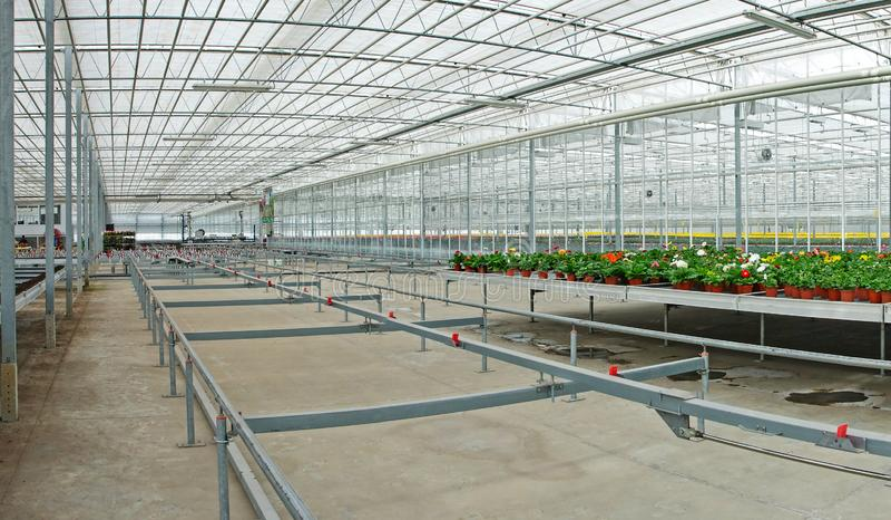 Serre chaude industrielle de panorama, préparée pour planter des usines images stock
