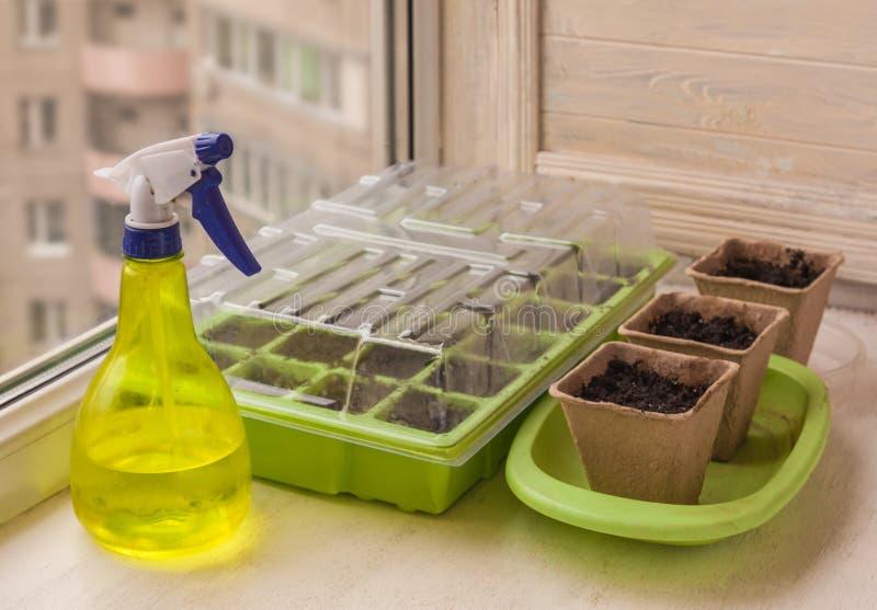 Serre chaude pour des jeunes plantes et des pots de tourbe images libres de droits