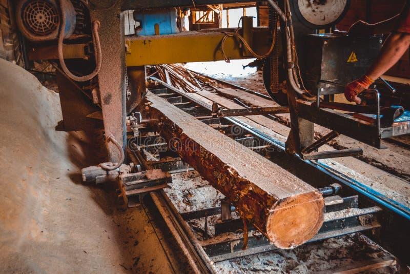 serrería El proceso de trabajar a máquina abre una sesión las sierras de la máquina de la serrería el t imagenes de archivo