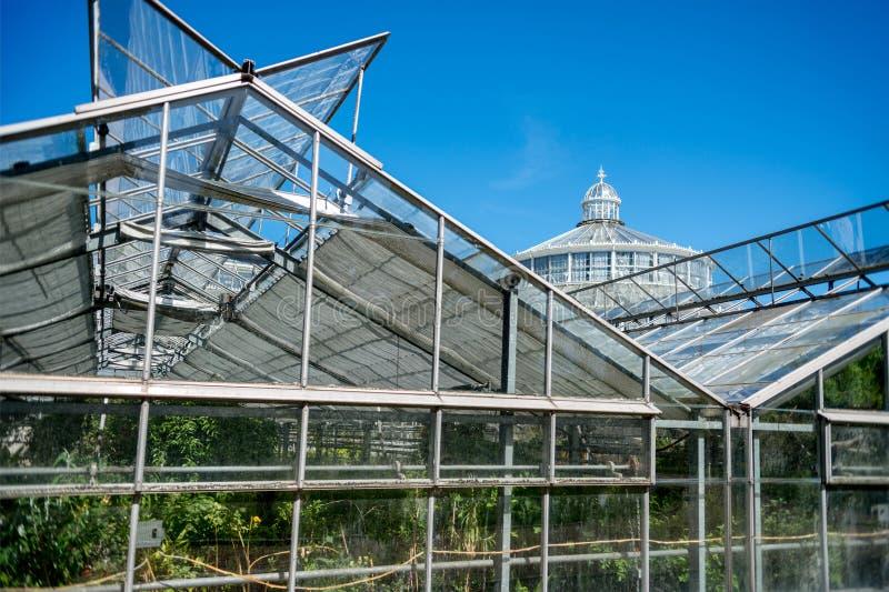 serres en Palmhuis in botanische tuin stock afbeelding