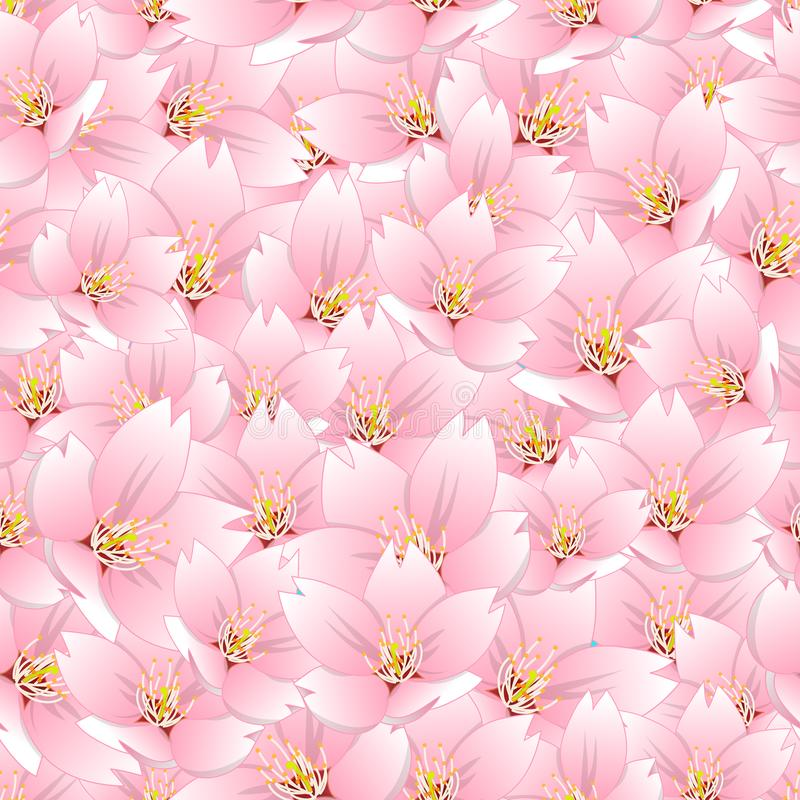 Serrulata del Prunus - flor de cerezo, Sakura Seamless Background Ilustración del vector ilustración del vector