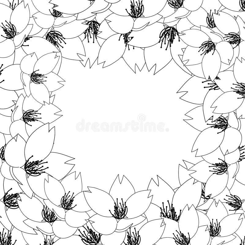 Serrulata del Prunus - la flor de cerezo, Sakura Outline Border aisló en el fondo blanco Ilustración del vector ilustración del vector