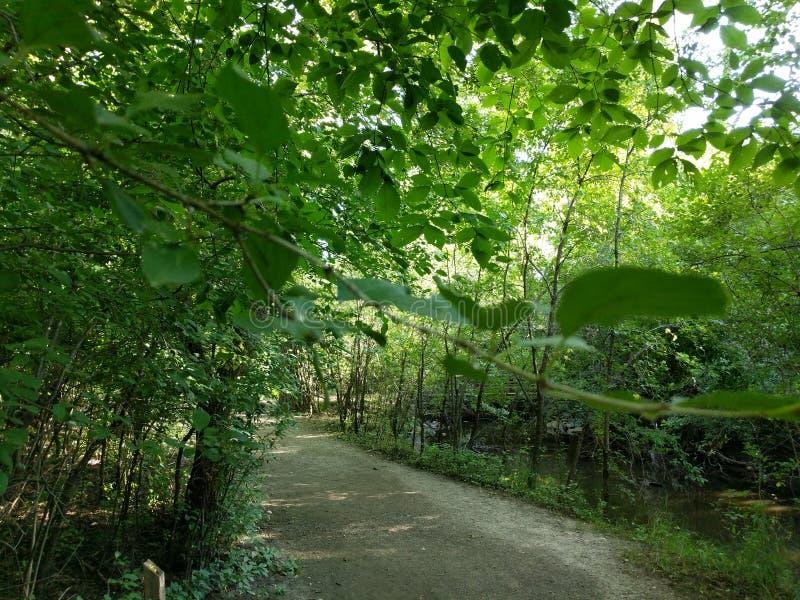 Sertoma公园自然步行 库存图片