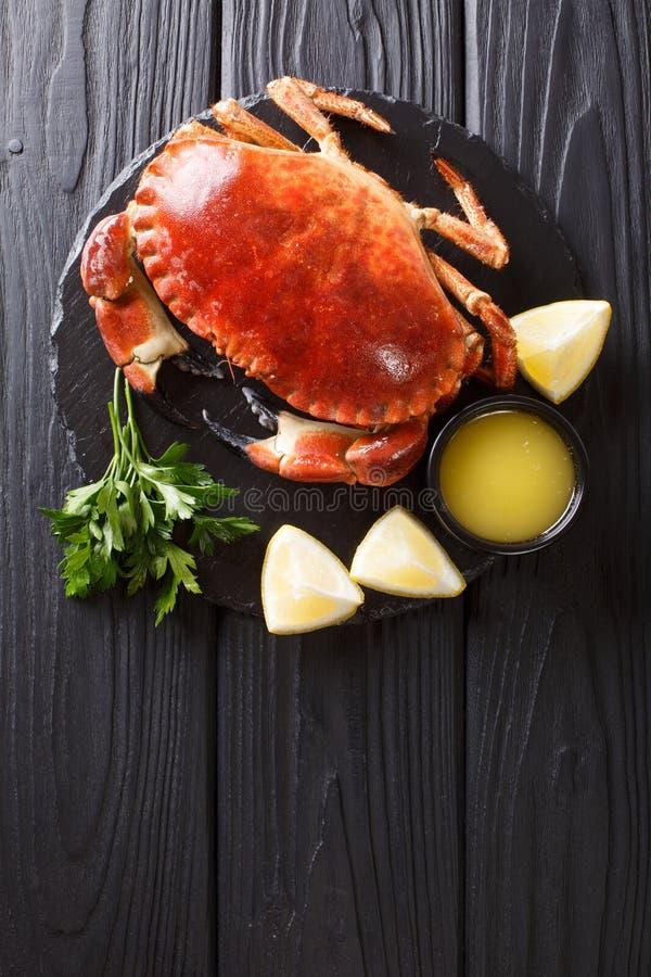 Served kokade läckerhet den bruna krabban med sås, citronen och persilja royaltyfri foto
