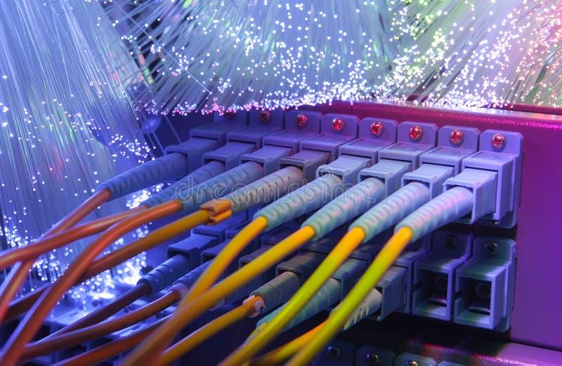Server con i cavi a fibre ottiche fotografia stock libera da diritti