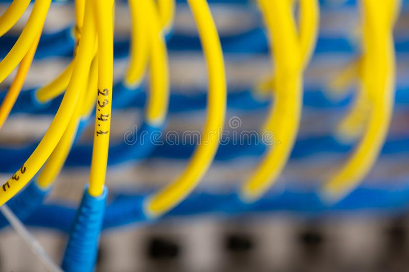 Server front side showing colorful switches and wiring Abstract blurred image for use as a background. Close-up royalty free stock photo