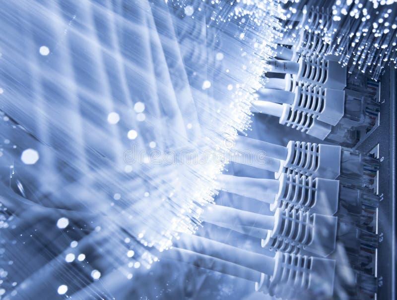 Server- och fiberoptik royaltyfri fotografi