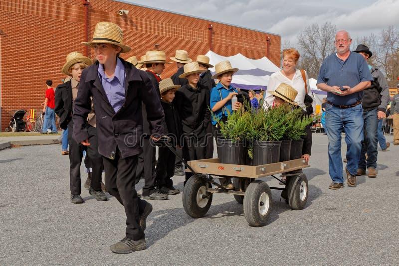 Serviço de entrega dos meninos de Amish na venda da lama imagem de stock