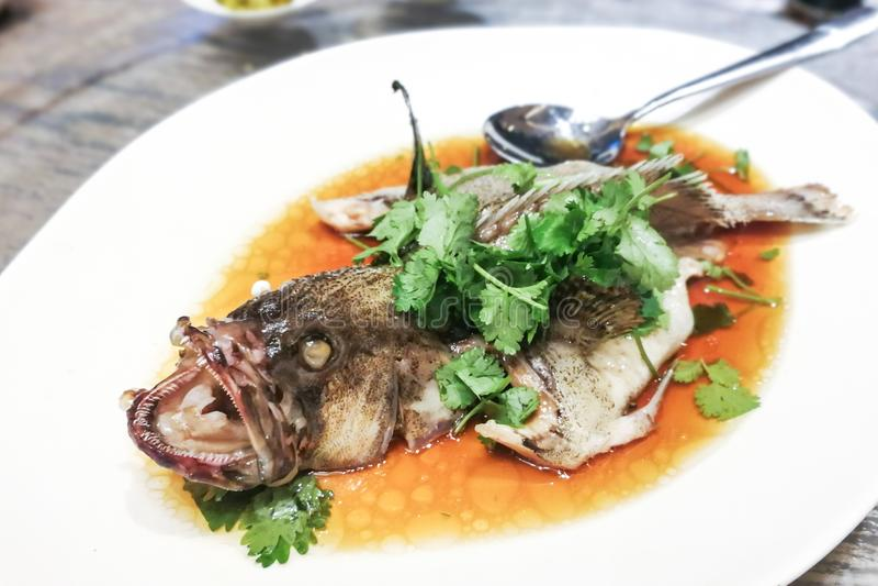 Serviço do estilo chinês cozinhado dos peixes da garoupa durante o cel festivo imagem de stock royalty free